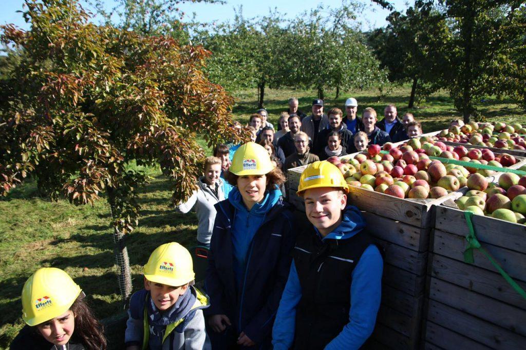 Die Gruppe beim Äpfel pflücken